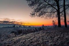 Утро зимы в Teufelsmoor около Бремена Германии Стоковые Фото