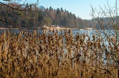 Утро зимы курортом на озере Стоковое фото RF