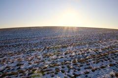 Утро зимы на холме в феврале Стоковое Изображение RF
