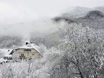 Утро зимы стоковые изображения