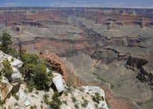утро каньона грандиозное Стоковое Фото