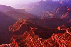 утро каньона грандиозное Стоковые Фото
