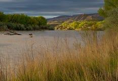 Утро Колорадо в мае стоковые изображения
