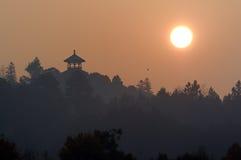 утро красотки Стоковое Фото