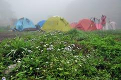 утро лагеря Стоковое Изображение RF