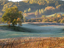 утро ландшафта сельской местности предыдущее Стоковая Фотография RF