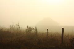 утро ландшафта тумана Стоковая Фотография RF
