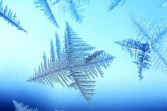 утро льда Стоковое Изображение RF