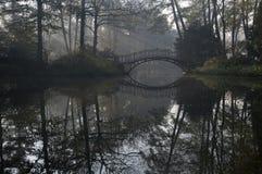 утро моста туманное стоковое фото