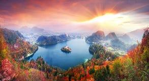 Утро на кровоточенном озере стоковое изображение rf