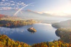 Утро на кровоточенном озере стоковая фотография rf