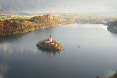 Утро на кровоточенном озере стоковое изображение