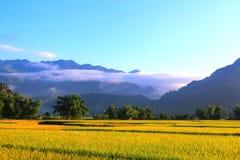 Утро на долине Mai Chau Стоковое Изображение RF