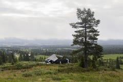 Утро на плато, Норвегия Стоковое фото RF