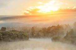 Утро на реке рано утром reeds туман тумана и поверхность воды на реке стоковая фотография
