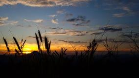 Утро на Pho Thok Стоковое фото RF