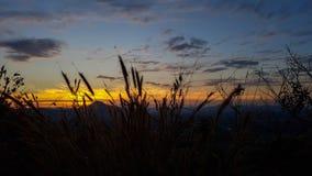Утро на Pho Thok Стоковая Фотография