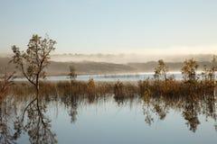 утро озера тумана Стоковая Фотография
