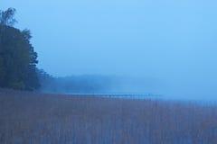 утро озера туманное утро осени холодное стоковые фото