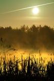 утро озера стоковая фотография rf