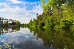 утро озера Стоковые Фотографии RF