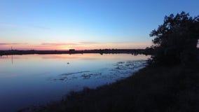Утро, озеро, птица акции видеоматериалы