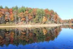 Утро осени в ноябре на пруде Walden Отражение Стоковые Изображения
