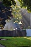 Утро осени в перспективе IL держателя, США Жилой район стоковое изображение rf