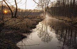 утро осени около потока Стоковое Изображение