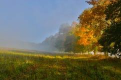 Утро осени Стоковая Фотография