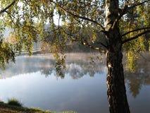 Утро осени Стоковые Фото