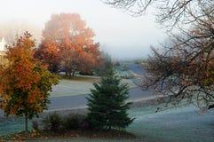 утро падения морозное Стоковые Фотографии RF