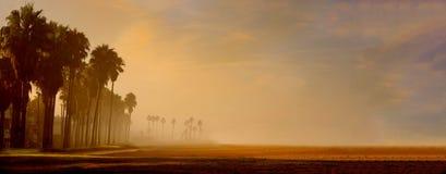 утро пляжа Стоковые Фотографии RF