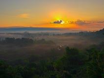 Утро древесины Кубани Стоковые Изображения