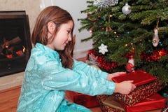 утро рождества Стоковое Фото