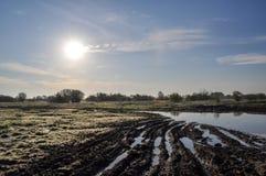 утро солнечное Стоковая Фотография RF