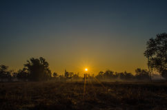 Утро Солнце Стоковое фото RF