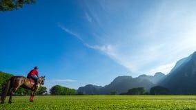 Утро с всадником поло в Ipoh Стоковое Фото