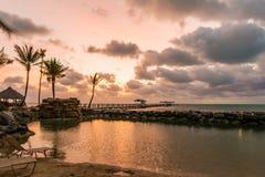 утро тропическое Стоковое Изображение