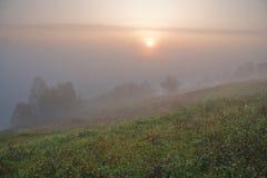 утро тумана Стоковые Фото