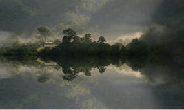 утро тумана иллюстрация штока
