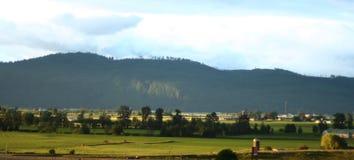 утро фермы Стоковое Изображение