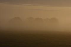 утро 2 туманов Стоковая Фотография