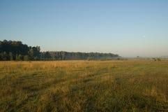 утро стоковое изображение
