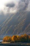 утро altiplano Стоковые Изображения RF