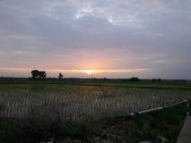 Утро Erly стоковое изображение rf