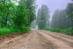 Утро overcast лета, лес дороги, деревья тумана Стоковое Изображение RF
