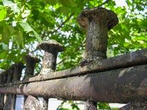 утюг загородки бросания старый Стоковое Фото