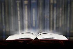 Ухищренная книга Стоковые Изображения