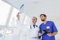 Ухищренные врач-специалисты обсуждая рентгенограмму Стоковые Фото
